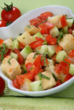 Fresh tomato and cucumber salad with bread cubes Stock Photography
