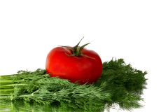 Fresh tomato and dill Royalty Free Stock Photos