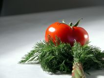 Fresh tomato and dill 2 Stock Photos