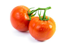 Fresh tomato with drop Stock Image