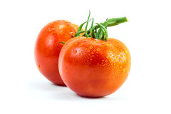 Fresh tomato with drop Royalty Free Stock Photo