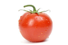 Fresh tomato with drops of water Royalty Free Stock Images