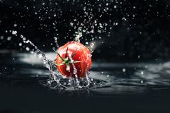 Fresh tomato falling in water Royalty Free Stock Photos