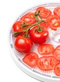 Fresh tomato on food dehydrator tray Royalty Free Stock Images