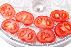 Fresh tomato on food dehydrator tray, ready to dry Royalty Free Stock Images