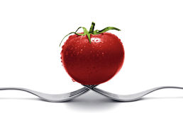 Tomato balancing on forks Stock Images