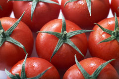 Fresh Tomato Fruits Royalty Free Stock Photo