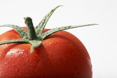 Fresh Tomato Fruits Stock Image
