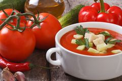 Fresh tomato gazpacho soup with vegetables and oils Stock Photography