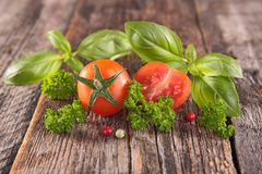 Fresh tomato and herbs Royalty Free Stock Photo