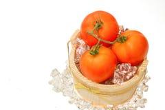 Fresh tomato on ice Royalty Free Stock Images