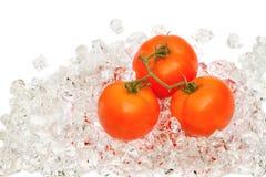 Fresh tomato on ice Royalty Free Stock Photography