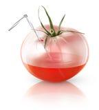 Fresh tomato juice. Transparent tomato, concept image for fresh tomato juice Stock Images