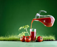 Fresh tomato juice on a background of grass Stock Image