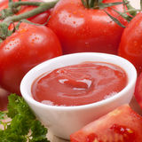 Fresh tomato ketchup Stock Photography