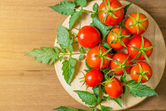 Fresh tomato and leaves Royalty Free Stock Photography