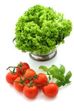 Fresh tomato and lettuce. On white background Stock Photos