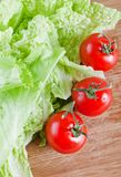 Fresh tomato and lettuce leaves Royalty Free Stock Photos
