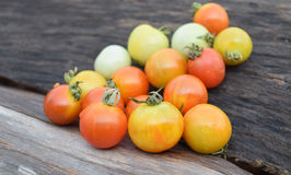 Fresh tomato. Fresh little tomato on wood background stock photography