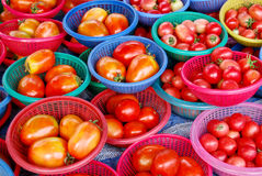 Fresh tomato in market. Many of fresh tomato in basket in fresh market , Asia , Thailand stock photo
