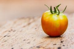Fresh tomato on old grey wood background. Fresh tomato on old grey wood background Stock Photography