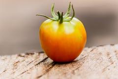 Fresh tomato on old grey wood background. Fresh tomato on old grey wood background Royalty Free Stock Image