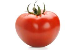 Fresh & Tomato Stock Photography