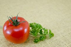 Fresh tomato and parsley on a table Stock Image