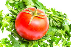 Fresh tomato and parsley on a white Stock Image