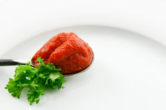 Fresh Tomato Paste Accented with Parsley Stock Photo