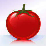 Fresh tomato on reflecting sur Stock Image
