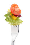 Fresh tomato and salad Royalty Free Stock Photos