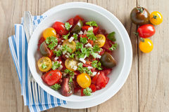 Fresh tomato salad. With onion and parsley Royalty Free Stock Image