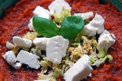 Fresh tomato sauce with basil leaves and goat cheese Royalty Free Stock Image