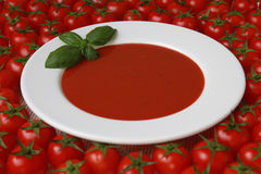 Fresh Tomato soup. A plate of tomato soup with fresh basil and tomatoes royalty free stock photos