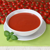 Fresh tomato soup. Closeup of a plate of tomato soup with fresh basil and tomatoes royalty free stock images