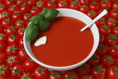 Fresh tomato soup. Closeup of a plate of tomato soup with fresh basil and tomatoes stock photos