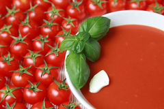 Fresh tomato soup. A plate of tomato soup with fresh basil, sour cream and tomatoes stock image
