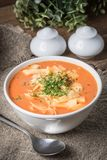 Fresh tomato soup with rice stock photography