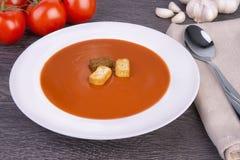 Fresh tomato soup in a white bowl Royalty Free Stock Photo