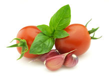 Fresh tomato with spice royalty free stock image