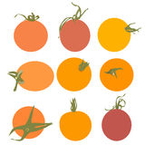 Fresh tomato vector. On white background Royalty Free Stock Photography