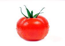 Fresh tomato with water drops Stock Photography