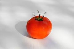 Fresh tomato. On white background Royalty Free Stock Photography