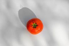 Fresh tomato. On white background Royalty Free Stock Photo