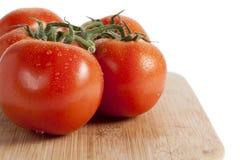 Fresh tomato Stock Photography