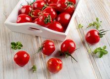 Fresh tomato in a wooden white box Stock Photos