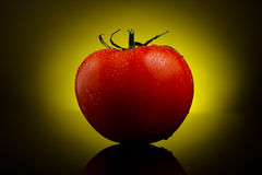 Fresh tomato on yellow Royalty Free Stock Photos
