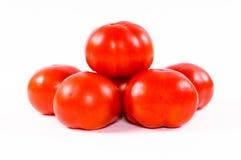 Fresh tomatoe Stock Image
