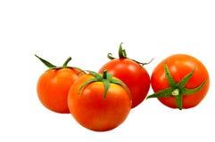 Fresh tomatoes. Isolated on white background Royalty Free Stock Photos